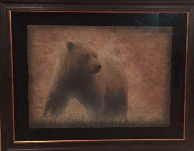 Rob Stern Grizzly Bear