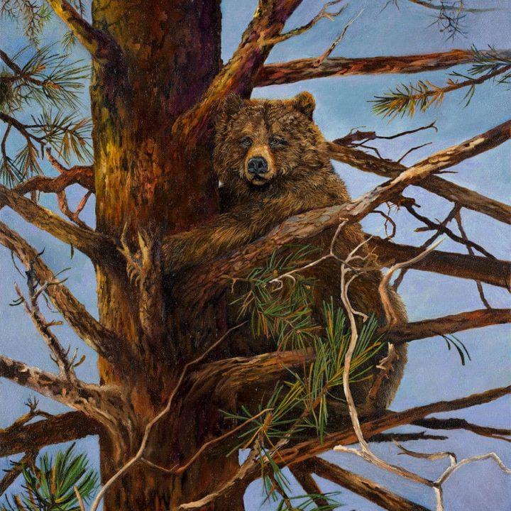 """Original Oil Painting of Bear """"Tree Hugger"""" by Virgia West"""