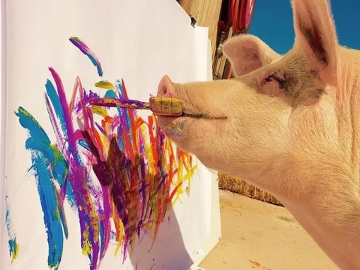 Pigcasso painting pig abstract art print