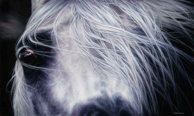 Shannon Lawlor Klasa White Horse Print