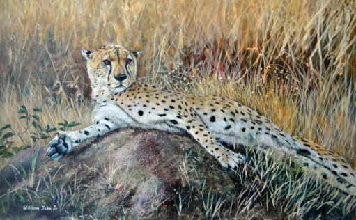 William John Jr Reclining Cheetah Painting