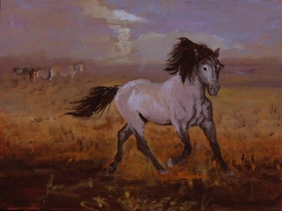 Linda Gulinson dancer wild grey mustang horse
