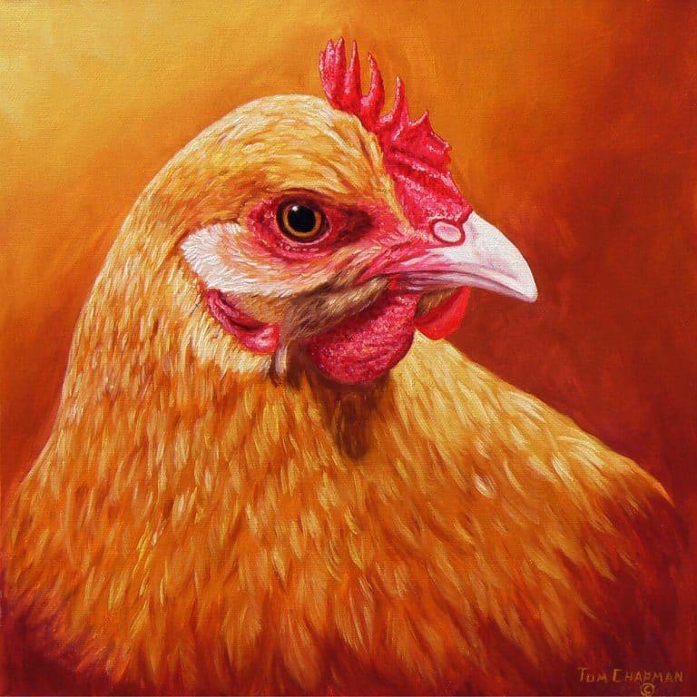 tom chapman buffy chicken painting