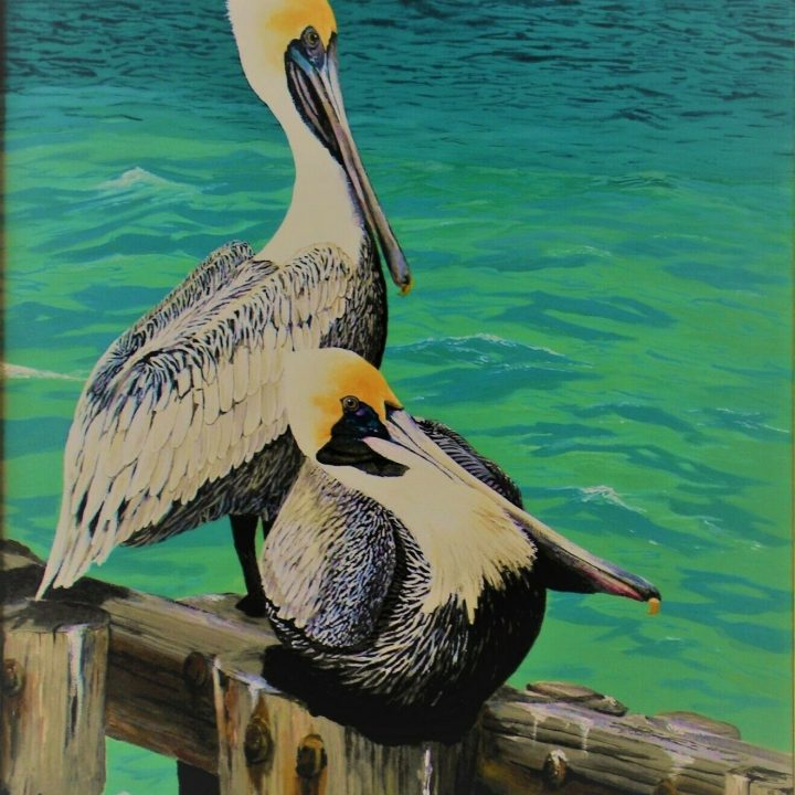 ron kucinski ready for winter pelicans acrylic painting